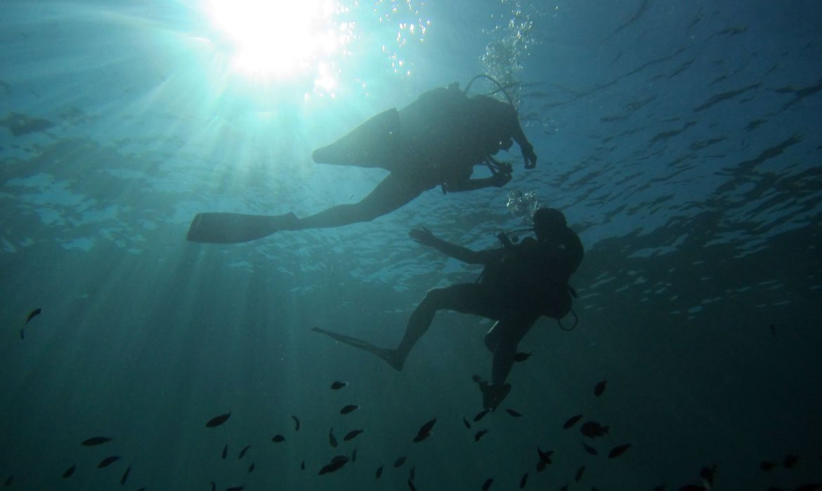 Diving in the blue in Indonesia Lombok
