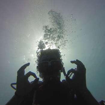 与私人潜导潜水