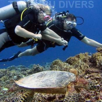 圣吉吉一日休闲潜水之旅