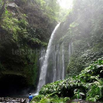 在龙目岛的瀑布