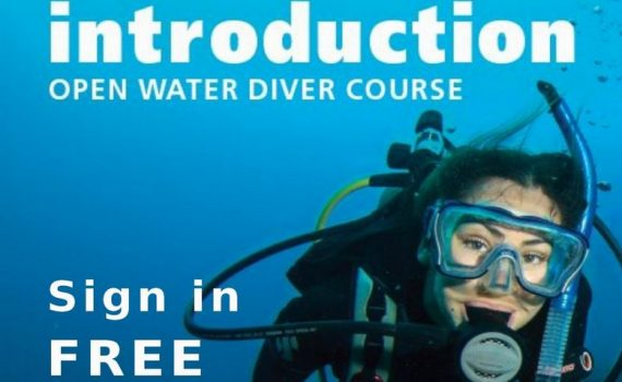 free diving introductory