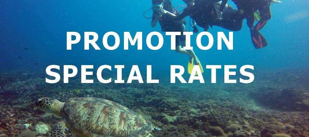 good dive center with cheap prices